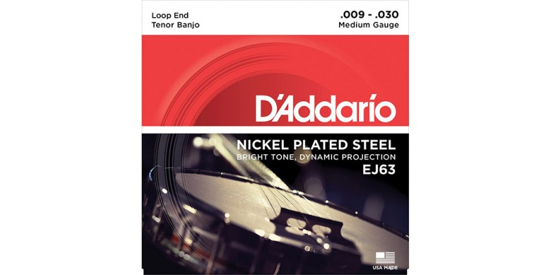 D'Addario EJ63 Tenor Banjo, Nickel, 9-30 Strings
