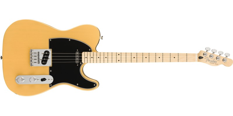 Fender Alternate Reality Tenor Tele Butterscotch Blonde Front