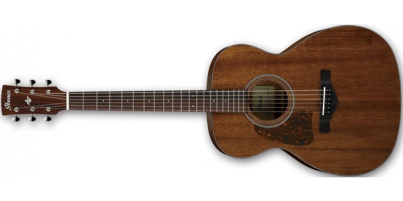 Ibanez-AVC9L-Artwood-Vintage-Left-Handed-Acoustic-Guitar-Front