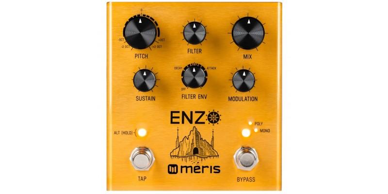 Meris Enzo Multi-Voice Synthesizer Pedal Front