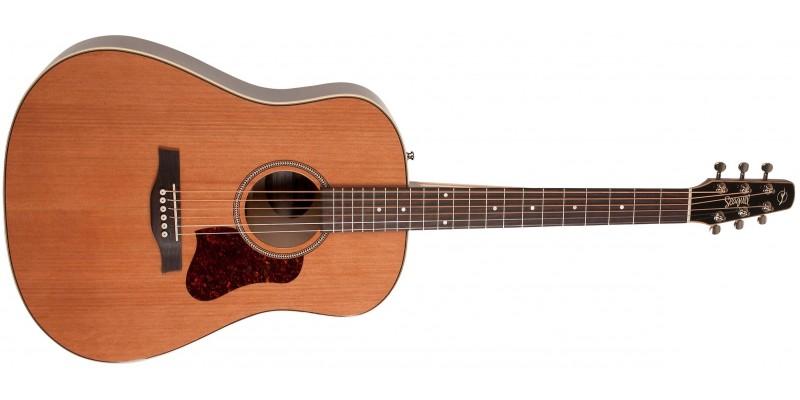 Seagull Coastline Momentum A E Hg Electro Acoustic Guitar