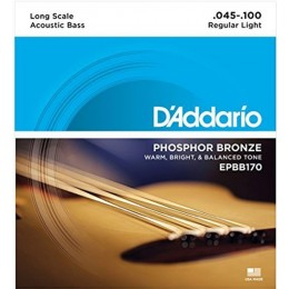 D'Addario EPBB170 Phosphor Bronze Acoustic Bass, Long Scale, 45-100