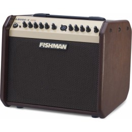 Fishman-Loudbox-Mini-Front-Angle