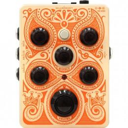 Orange Acoustic Pedal 1