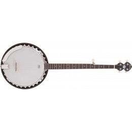 Pilgrim Progress VPB30G 5-String G Banjo Front