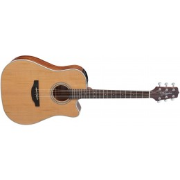 Takamine GD20CE Electro-Acoustic Guitar Natural Front