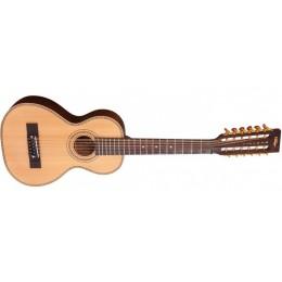 Vintage Paul Brett VTR800-12 String Travel Acoustic Front